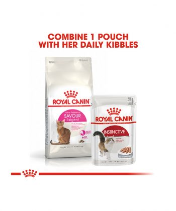 ANIMAL HOUSE HOSPITAL - PRODUCTS CATS ROYAL CANIN EXIGENT 2KG GALLERY