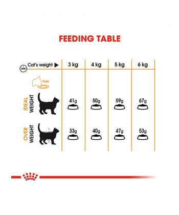 ANIMAL HOUSE HOSPITAL - PRODUCTS CATS ROYAL CANIN HAIR SKIN CARE 2KG GALLERY