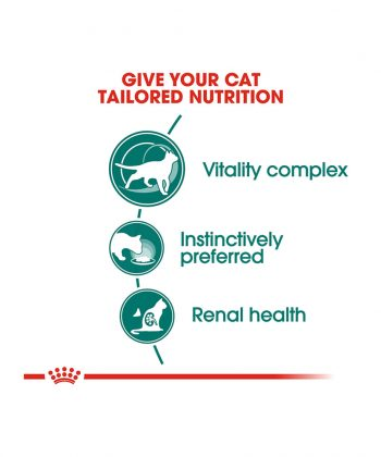 ANIMAL HOUSE HOSPITAL - PRODUCTS CATS ROYAL CANIN INSTINCTIVE Plus7 12X85G GALLERY