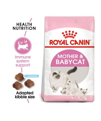 ANIMAL HOUSE HOSPITAL - PRODUCTS CATS ROYAL CANIN MOTHER BABY CAT 400G 2KG GALLERY