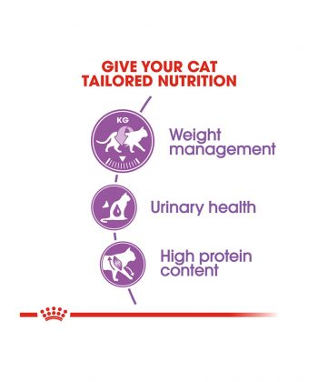 ANIMAL HOUSE HOSPITAL - PRODUCTS CATS ROYAL CANIN STERILISED CAT 2KG GALLERY