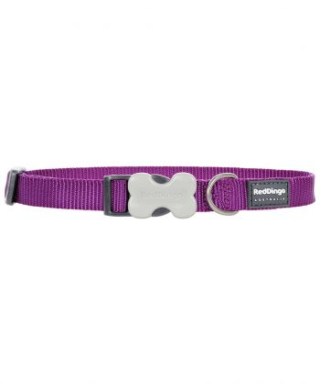 ANIMAL HOUSE HOSPITAL - PRODUCTS RED DINGO DOG COLLAR CLASSIC PURPLE