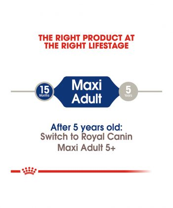 ANIMAL HOUSE HOSPITAL - PRODUCTS ROYAL CANIN MAXI ADULT 4KG 10KG 15KG GALLERY