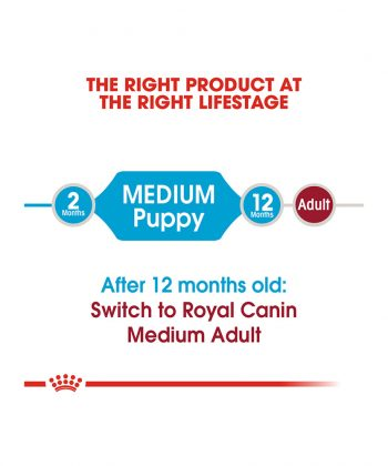 ANIMAL HOUSE HOSPITAL - PRODUCTS ROYAL CANIN MEDIUM PUPPY 4KG 15KG GALLERY