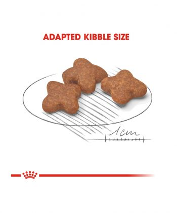 ANIMAL HOUSE HOSPITAL - PRODUCTS ROYAL CANIN MINI ADULT 8 PLUS 2KG 4KG GALLERY