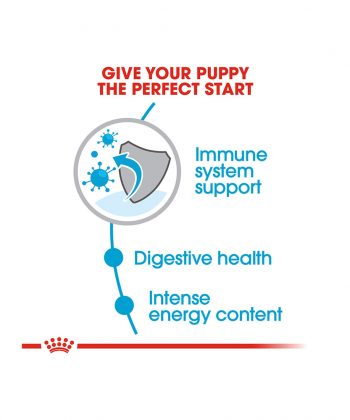 ANIMAL HOUSE HOSPITAL - PRODUCTS ROYAL CANIN MINI PUPPY 2KG 4KG GALLERY