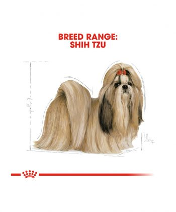 ANIMAL HOUSE HOSPITAL - PRODUCTS ROYAL CANIN SHIH TZU ADULT 1.5KG GALLERY
