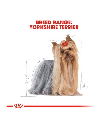 ANIMAL HOUSE HOSPITAL - PRODUCTS ROYAL CANIN YORKSHIRE TERRIER ADULT 1.5KG GALLERY