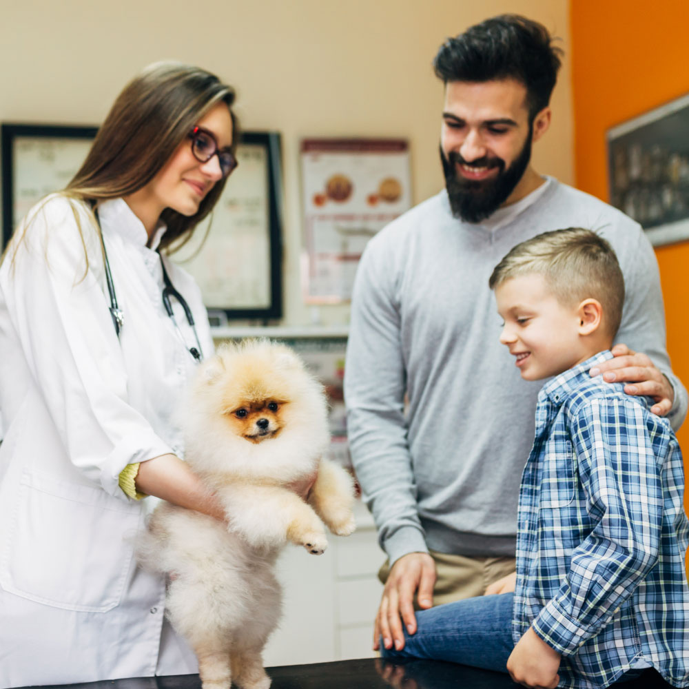 ANIMAL HOUSE HOSPITAL - VETERINARY HOSPITAL SCHEDULE A VISIT