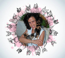 Animal House Hospital Rita Cat Care Service 1